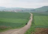 The meseta near Redecilla del Camino