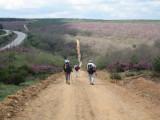 Down and up ramp in Monte de Oca