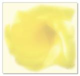 Flower Notecard.jpg