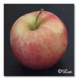 15. Apple.jpg