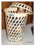 Basket full .jpg