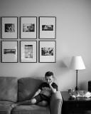 Den, Cat, Gallery, Couch