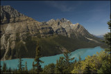 PEYTO LAKE   BANFF N.P.