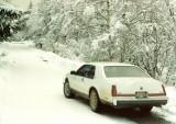 Car #7-04.jpg