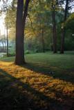 DC: Kenilworth Aquatic Gardens