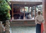 Behind Neka Gallery, Ubud.