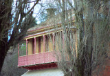Balcony, with poplars, Hill End, NSW