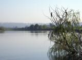 Morning at Pughs Lagoon
