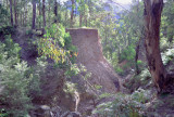 Washout on the Newnes Line