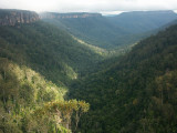 View from lookout near Fitzroy Falls