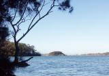 Scenic Forest Walk – Lake Mummuga