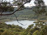 Manly Dam Reserve