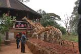Nairobi - Giraffe Manor and School  Kids - 2007