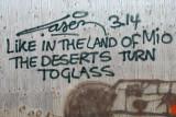 Deserts turn to glass 0070115-007