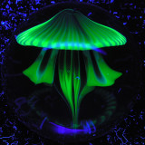 Jellyfish Headlight  Size: 1.38  Price: SOLD