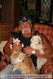 Hulk Hogan's Home