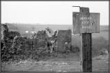 Farmhouse 7