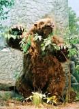03_giant_sloth.jpg
