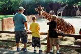 12_giraffe_b.jpg
