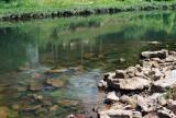 12_riverwater.jpg