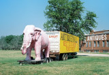 13_pink_elephant_2.jpg
