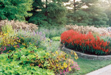 20_botanical_garden_1.jpg