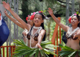 Flame Tree Festival Dancers