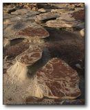 Bisti Wilderness : Tables
