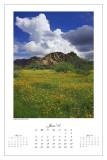2007 Calendar - 06 June