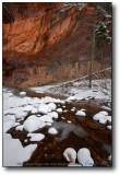 Oak Creek Canyon : West Fork in Snow I