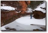 Oak Creek Canyon - West Fork in Snow VI