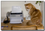My Fax Assistant