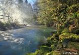 Fog, sun, river, rock & moss