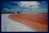 Salt, Pink Water, and Foam