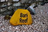 Bari Reef is the house reef for the Sand Dollar