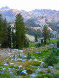A Morning in the Sierras