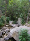 Cold Springs Canyon.jpg