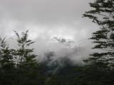 The Quelaut National Park