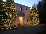Westmont College Tree Lighting