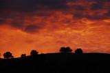 Coloma sunset