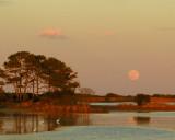 Moonrise at Chincoteague