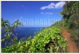 Kalalau Trail along Napali Cliffs