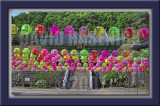 2007 - Buddha's 2551st Birthday