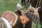 July4th2007SDIM4661.jpg