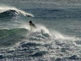 16a May 07  -Surf at Lyall Bay