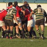 Senior club Rugby