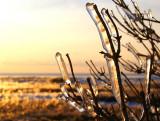 Ice age in Denmark