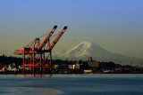 Port of Seattle, Mt. Rainier, and a Flock