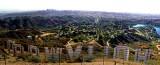 Hollywood Panorama