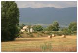 Surrounding Farmland